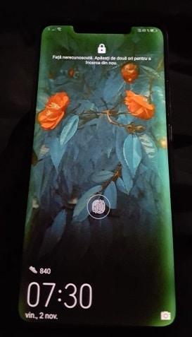 Huawei Mate 20 Pro fallo pantalla